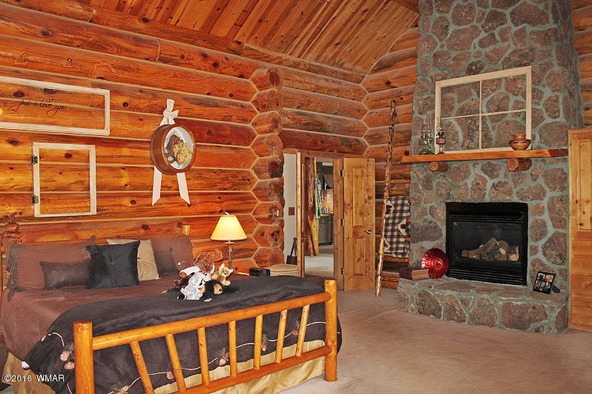 38721 State Route 373, Greer, AZ 85927 Photo 30