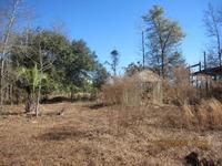 Home for sale: 1301 Mt Carmel Rd., Walterboro, SC 29488