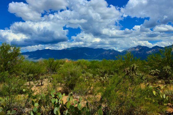 14601 N. Quiet Rain Dr., Oro Valley, AZ 85755 Photo 18