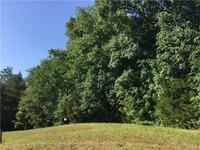 Home for sale: 215 Spaniel Dr. S.E., Concord, NC 28025