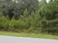 Home for sale: 0 Falcon Dr./Hawk Tr/Wren Ln., Vidalia, GA 30474