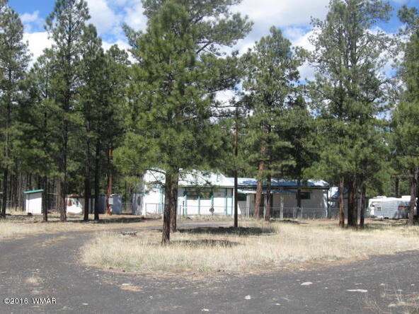 38730 Hwy. 373, Greer, AZ 85927 Photo 8