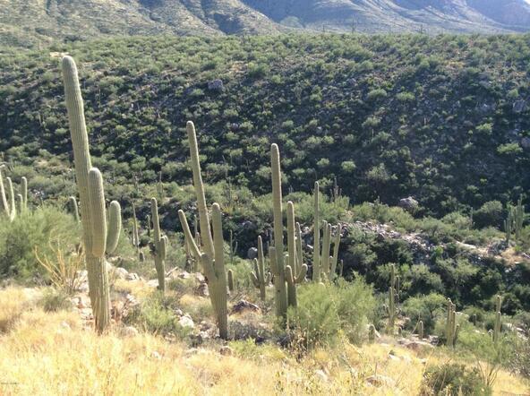 2500 Della Roccia Ct., Oro Valley, AZ 85737 Photo 13