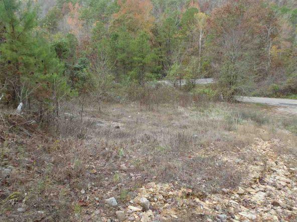 108 Buckthorn, Mountain Pine, AR 71956 Photo 3