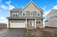 Home for sale: 13613 Palmetto Dr., Plainfield, IL 60585