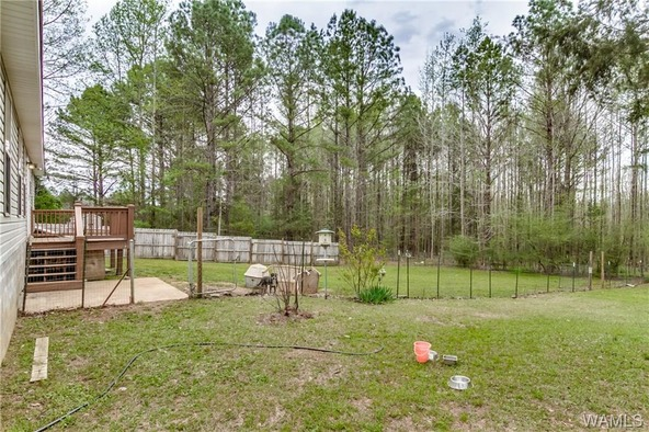 14061 Doyle Beams Rd., Cottondale, AL 35453 Photo 13