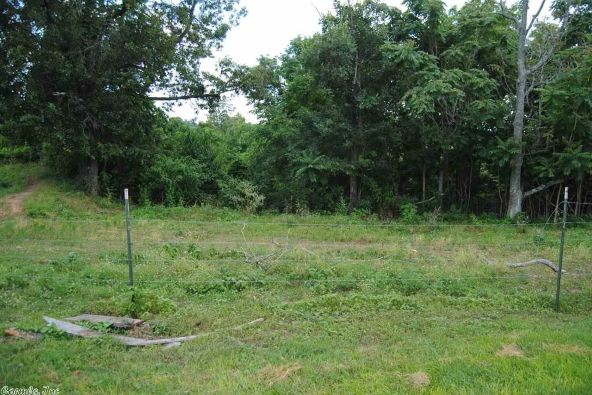 394 Trout Farm Rd., Marshall, AR 72650 Photo 30
