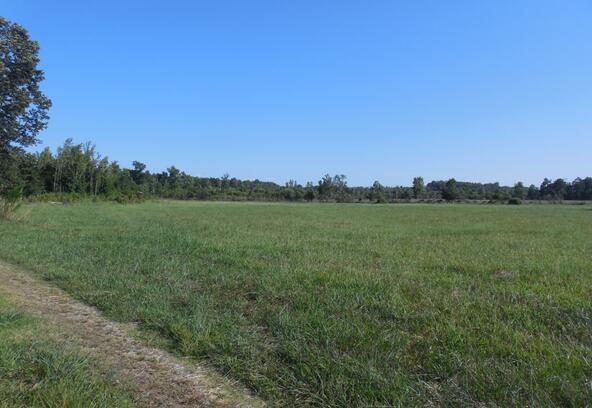 00 County Rd. 571, Hanceville, AL 35077 Photo 4