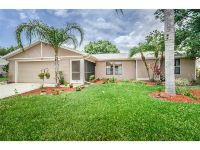 Home for sale: 655 Tamarind Ln., Oldsmar, FL 34677