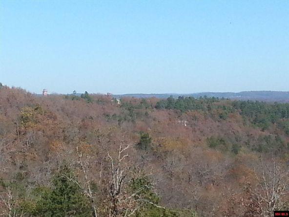 550 Mc 2031, Lead Hill, AR 72644 Photo 4