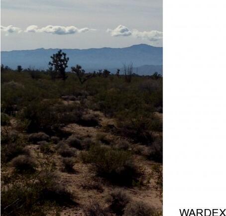 757 Roy Rogers Dr., Yucca, AZ 86438 Photo 2