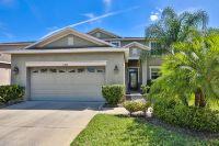 Home for sale: 11440 Flora Springs Dr., Riverview, FL 33579