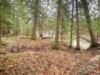 Home for sale: E. 23rd Rd., Crivitz, WI 54114