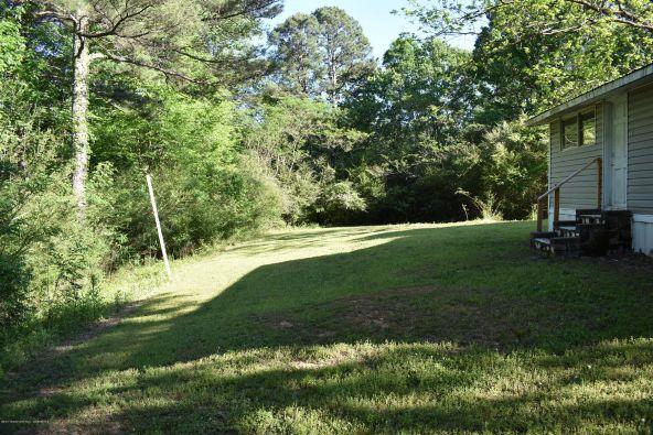 659 Reed Rd., Cordova, AL 35550 Photo 24