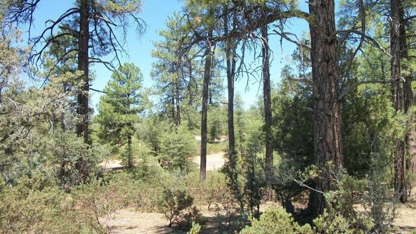 509 N. Chaparral Pines Dr., Payson, AZ 85541 Photo 8