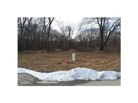 Home for sale: 36925 Hunters Pt Dr., Van Meter, IA 50261
