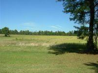 Home for sale: 1030 Mac Faddin Ln., Newborn, GA 30056