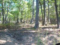 Home for sale: 0 Craig Creek Rd., Eagle Rock, VA 24085