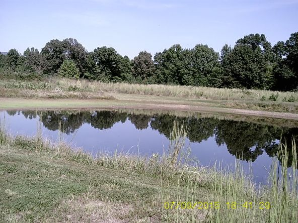 432 Cr 3355, Clarksville, AR 72830 Photo 20