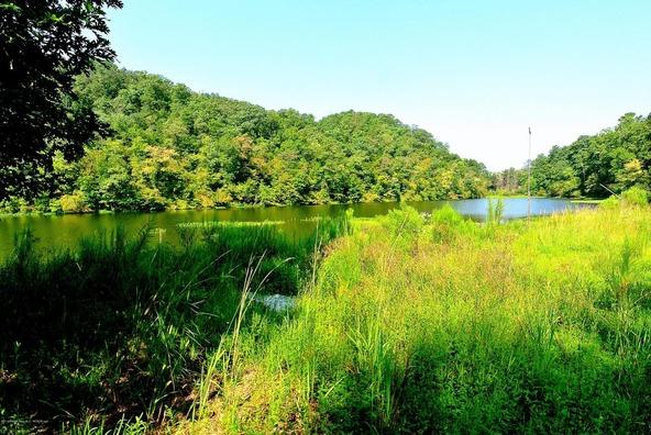 2209 White Oak Creek, Oakman, AL 35579 Photo 15