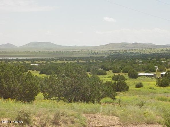 1a N. 8690, Concho, AZ 85924 Photo 57