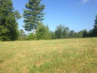 Home for sale: Lot 2 Lenore B Ln. State Park Estates, Mountain Rest, SC 29664