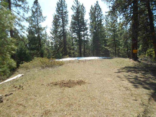Tbd Star Claim Tract 3, Idaho City, ID 83631 Photo 2