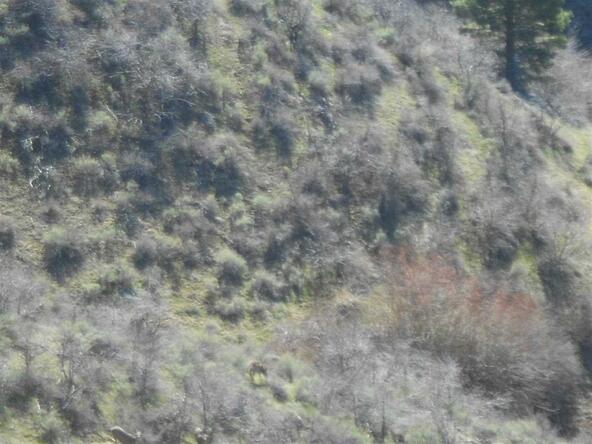 Tract 3 Robie Ridge, Boise, ID 83716 Photo 2