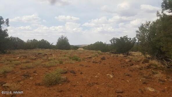 2075 Parker Ranch Rd., White Mountain Lake, AZ 85912 Photo 14