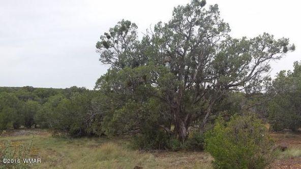 8273 Ridge Dr., Show Low, AZ 85901 Photo 7