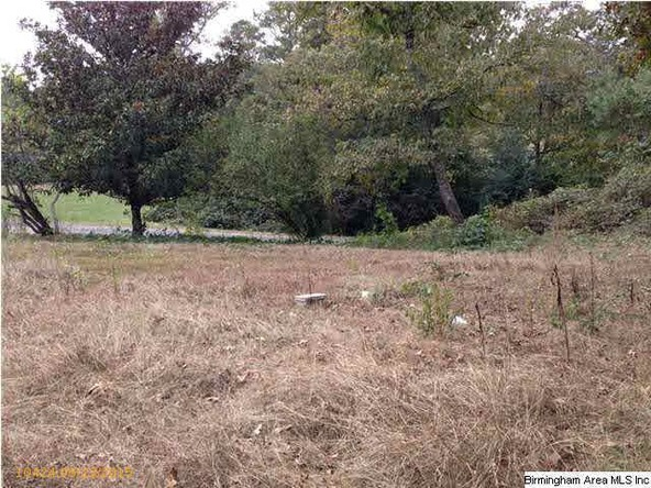 416 Cane Creek Cemetery Rd., Warrior, AL 35180 Photo 1