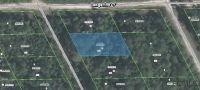 Home for sale: 302 Heron Ct., Satsuma, FL 32189