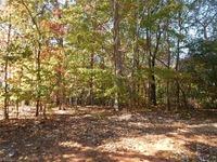 Home for sale: 0000 Claremont Dr., Elkin, NC 28621
