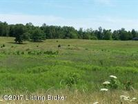 Home for sale: Lot 2a White Ln., Cecilia, KY 42724