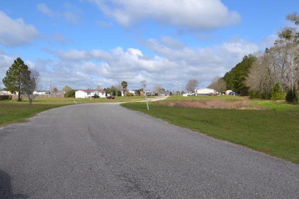 30 Eagles Ln., Robertsdale, AL 36567 Photo 3