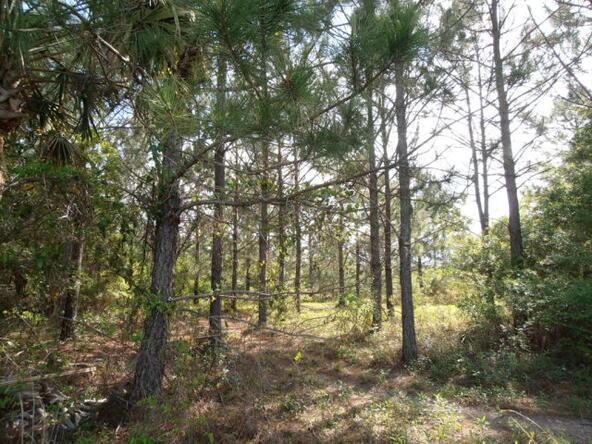 10630 County Rd. 91, Lillian, AL 36549 Photo 27