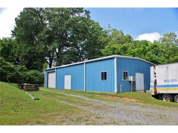 20 First Avenue, Eclectic, AL 36024 Photo 17