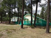 Home for sale: 301 Cree Meadow Dr., Ruidoso, NM 88345
