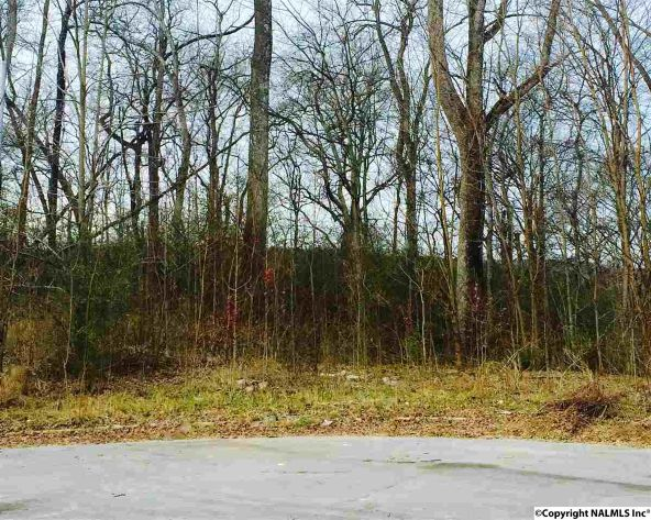 232 Magnolia Glen Dr., Huntsville, AL 35811 Photo 2