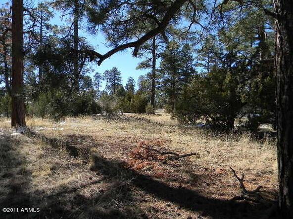 2000 Sunset Trail, Overgaard, AZ 85933 Photo 4