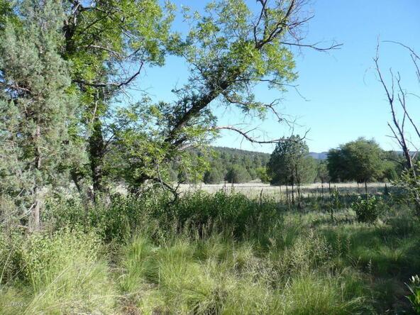 200 E. Cline Crossing, Young, AZ 85554 Photo 54