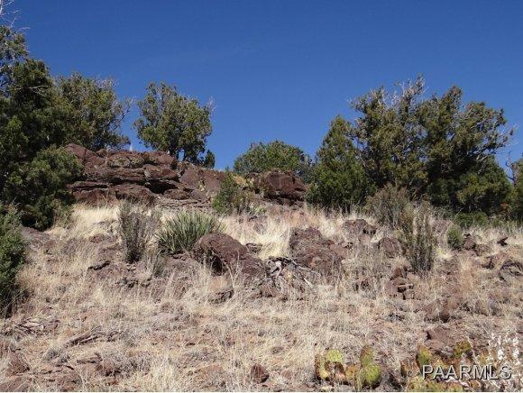 808 Sierra Verde Ranch, Seligman, AZ 86337 Photo 9