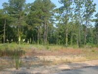 Home for sale: Lot 2 & 3 Crotwell Rd., Leesburg, GA 31763