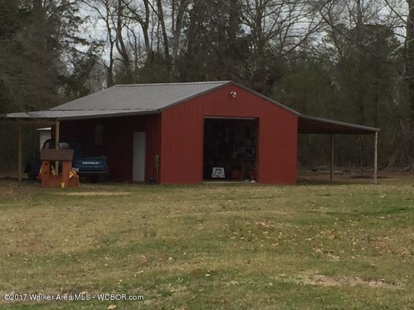 1873 County Rd. 93, Bankston, AL 35542 Photo 34