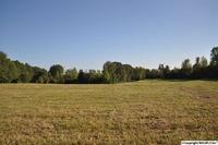 Home for sale: 151 Covenant Ln., Ardmore, AL 35739