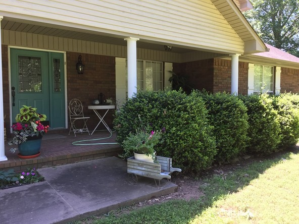 205 Blue Bird Ln., Knoxville, AR 72845 Photo 35