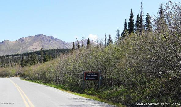 1231 Sultana Ct., Anchorage, AK 99516 Photo 23