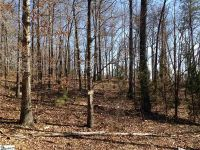 Home for sale: Lot 32 Academy, Pickens, SC 29671