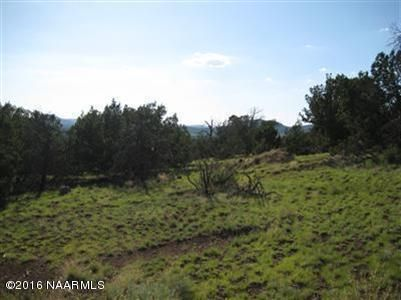 1721 E. Sagebrush Rd., Williams, AZ 86046 Photo 2