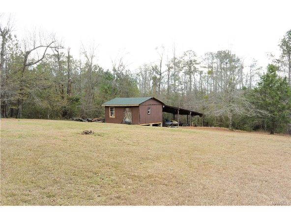 118 Old Colley Rd., Eclectic, AL 36024 Photo 69